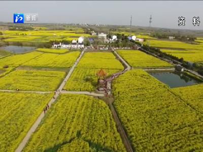 2020年全市种植业生产总体平稳