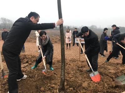 市政协机关干部参加义务植树活动