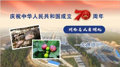 """直播   """"庆祝中华人民共和国成立70周年——网络名人看湖北""""走进随州"""
