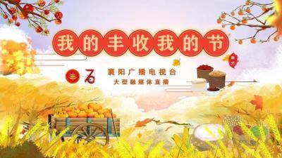 """【直播】2019中国(襄阳)农民丰收节""""我的丰收 我的节"""""""