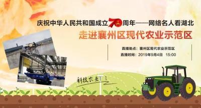 """""""庆祝中华人民共和国成立70周年——网络名人看湖北""""走进襄州区现代农业"""