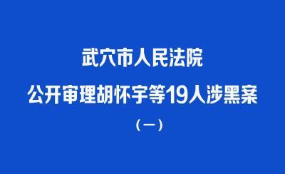 直播| 武穴:胡怀宇等19人涉黑案开庭公审(一)