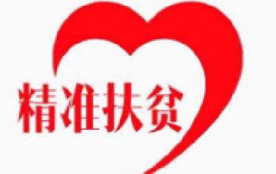 李涛赴官垱镇双冢村调研精准扶贫工作