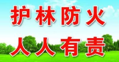东宝区首发森林防火戒严令