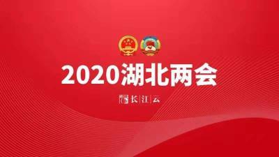 直播 | 政协湖北省第十二届三次会议开幕会