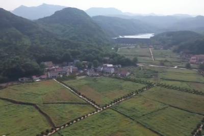 """我们的节日·文明旅游丨乡村""""农家乐"""" 防控为先 控制客流"""