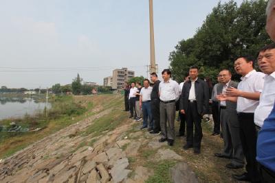市人大代表龙泉小组视察漳河保护工作