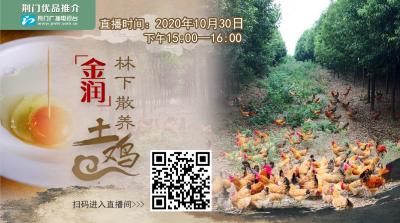 荆视频直播丨荆门优品推介:金润林下散养土鸡