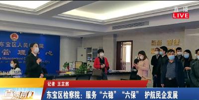 """东宝区检察院:服务""""六稳""""""""六保""""护航民企发展"""