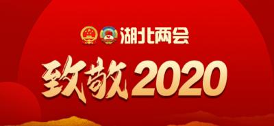 湖北两会 致敬2020