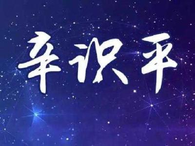 """新华全媒+ 辛识平:""""樱花之约""""汇聚前行的力量"""
