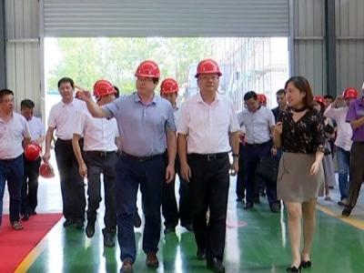 黄石市副市长吴之凌来冶调研招商引资及项目建设工作