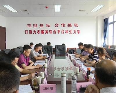 省供销社副主任张永红来冶调研供销社综合改革工作