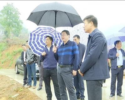 王刚检查全省国土绿化和生态修复现场会筹备情况
