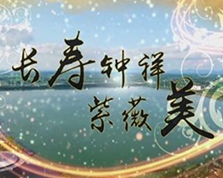 长寿文化节