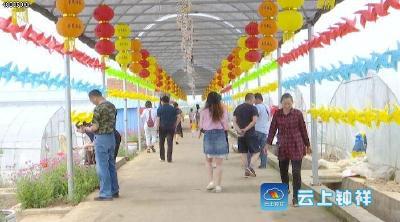 """速扩散,""""西瓜之乡""""官庄湖第一批西瓜上市了!"""