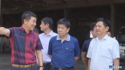 荆门市人大调研我市磷化工产业转型升级情况
