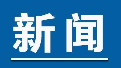 武汉市纪委监委通报5起干部下沉社区典型问题