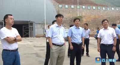 邵祖江调研钟祥重点项目建设情况