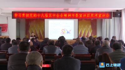 钟祥市委宣讲团为双河镇党员干部宣讲十九届五中全会精神