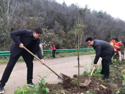 客店镇机关干部开展义务植树活动