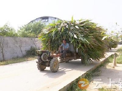 湖北亿隆公司:秸秆回收利用   增加农民收入