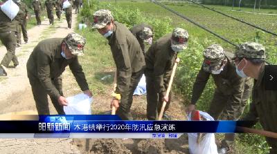 阳新县木港镇举行2020年防汛应急演练