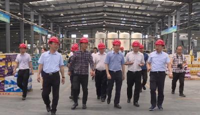 市委常委、副市长陈惠霞来我县调研重点项目建设工作