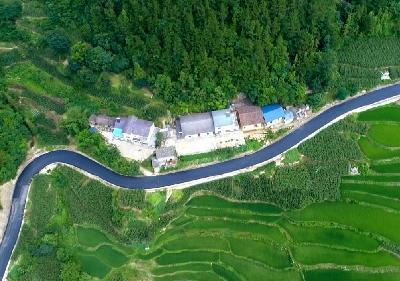 """黄粮镇:""""美丽宜道""""建设拓展产业致富路"""