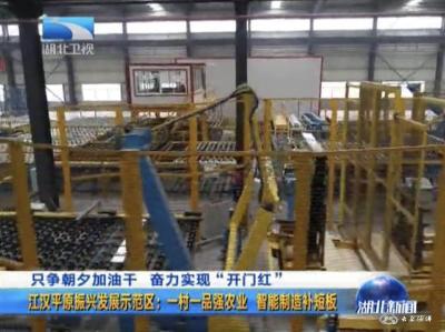 [湖北卫视] 江汉平原振兴发展示范区:一村一品强农业 智能制造补短板