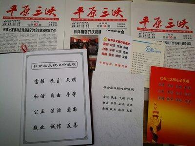 """清华大学学生""""九久入户""""社会实践支队来沙调研"""