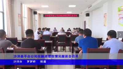 沙洋县平台公司投融资绩效情况座谈会召开