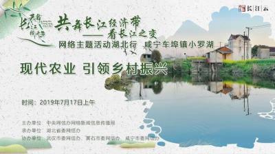 """直播   """"共舞长江经济带 看长江之变""""活动走进咸宁,看现代农业如何引领乡村振兴"""