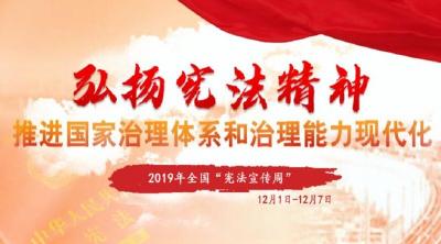 """县自然资源和规划局积极开展""""12.4""""国家宪法日法制宣传活动"""