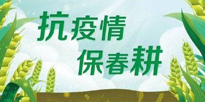 【抗疫情 保春耕】沙洋县自然资源和规划局驻曾集镇青桥村抓好疫情防控和春耕生产两不误