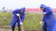 V视丨我县开展2021年全民义务植树活动