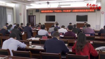 V视丨县委常委会主题教育开展第四次集中研讨