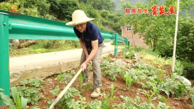 链子崖村:村规民约立起来 乡村治理强起来