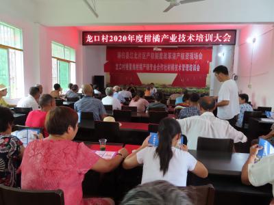 龙口村产业技术培训  助力柑橘产业发展