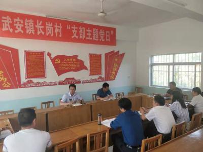"""县领导到武安镇开展""""不忘初心、牢记使命""""主题教育专题调研"""