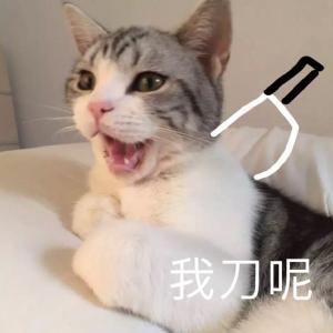 """""""泰国杀妻骗保案""""嫌犯翻供拒认罪【三分钟法治新闻全知道】"""
