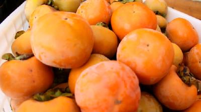"""甜了舌尖的甜蜜""""柿""""业"""