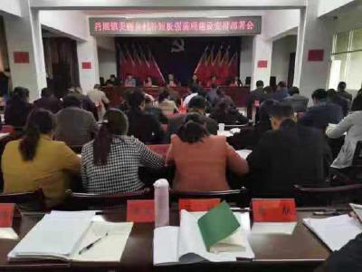 肖堰镇积极推进美丽乡村补短板强弱项建设