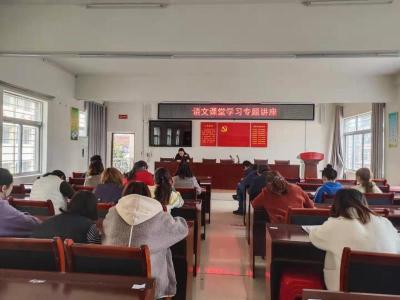 肖堰镇完全小学举办语文课堂学习专题讲座