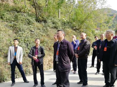县人大常委会视察全县乡村振兴战略实施情况