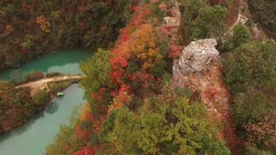 南漳有一个小村落,到了秋天满山红叶,美丽又优雅