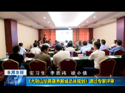 《大别山毕昇康养新城总体规划》通过专家评审