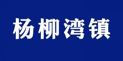 """洁美赵家山 乐居""""蜜蜂尖"""" ——杨柳湾镇赵家山村人居环境整治走笔"""