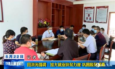 【视频】田洪光强调:加大就业扶贫力度 巩固脱贫成果