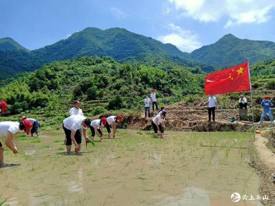 南河财政所党支部开展6月份支部主题活动